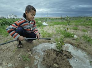Bilal, 7-year old Gaza boy (photo: Paul Jeffrey / ACT Alliance)
