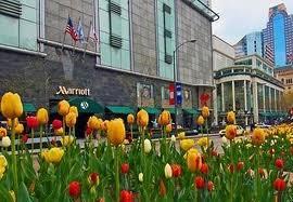 Magnificant Mile Marriott Hotel