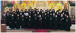 Assembly of Orthodox Bishops