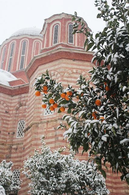 White Christmas at Xenophontos